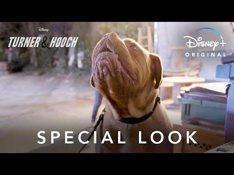 Special Look   Turner & Hooch   Disney+