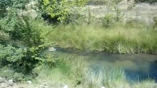 preview picture of video '++Troy-Baño en Las Fuentes-24-08-09  001 045.mp4'