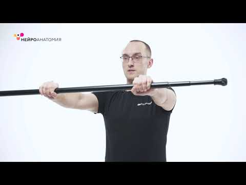 Восстановительная гимнастика после инсульта