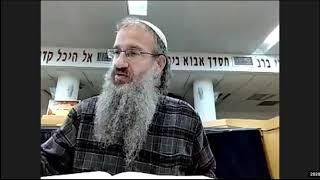 תלמוד ירושלמי מסכת שביעית פרק ב הלכה א