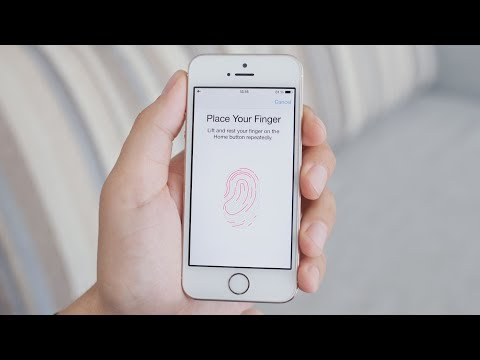 Download How Does Fingerprint Scanning Work? HD Mp4 3GP Video and MP3