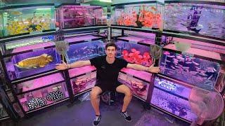 Inside Asias *LARGEST* Aquarium Fish Market!! ... (Bangkok Thailand) $$$