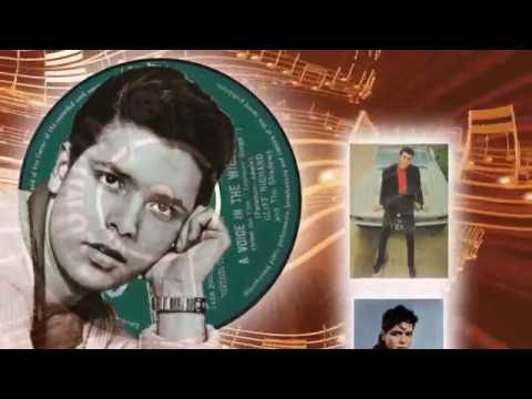 Cliff Richard  -  A Voice In The Wilderness
