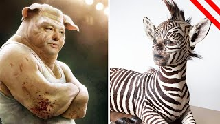 Animal-Human Hybrids Created By Science