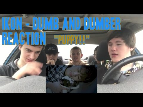 Ikon - Dumb & Dumber MV Reaction (Non-Kpop Fan)