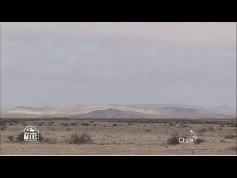 2016 FIM Cross-Country Rallies World Championship - Atacama Rally (CHL) - Clip 5