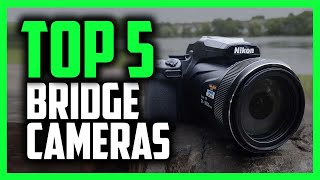 Best Bridge Cameras in 2020 [Top 5 Picks With Amazing ZOOM!]
