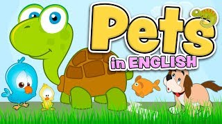 PETS in English for kids
