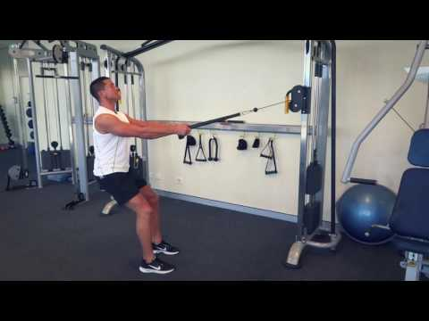 Cable Rear Delt Row (Exercises.com.au)