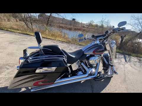 2008 Harley-Davidson Softail Deluxe in Muskego, Wisconsin - Video 1