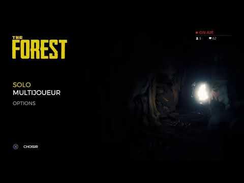 The forest solo on va se faire des indigène : 