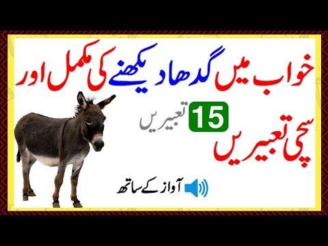 To see a donkey in a dream Khawab Mein Gadha Dekhnay Ki Tabeer In Urdu/Hindi Donkey Dream Meaning