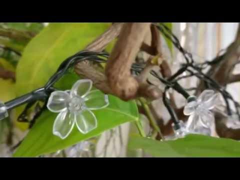 Blumen Lichterkette LED