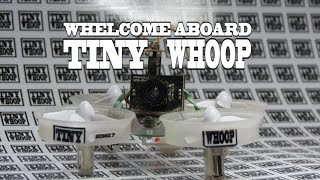 Whelcome to TINY WHOOP - Team BIG WHOOP - The Last Starfighter - Blade Inductrix FPV