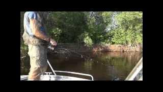 Рыбалке на ахтубе в мае