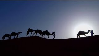 Rub' Al Khali - British Expedition