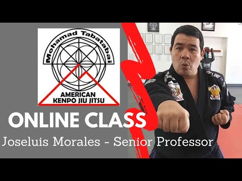 (Day 1 )Online Classes for Students, Members and friends of American Kenpo Jiu Jitsu Academy