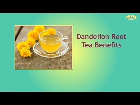 Video Dandelion Root Tea Benefits - Dandelion Health Benefits