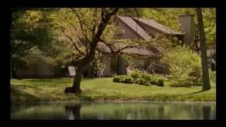 映画『50歳の恋愛白書』予告編 - YouTube