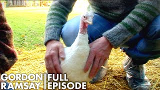 Gordon Raises Turkeys In His Garden | The F Word Full Episode