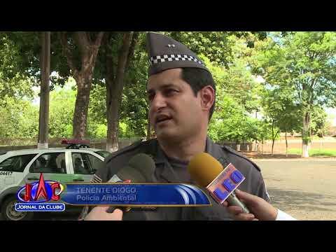 83 animais são apreendidos em Batatais - Jornal da Clube 2ª Edição (15/12/2017)