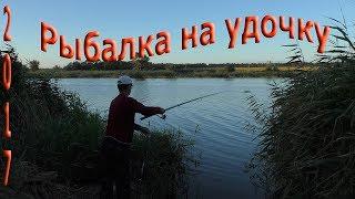 Рыбалка с берега на поплавочную удочку