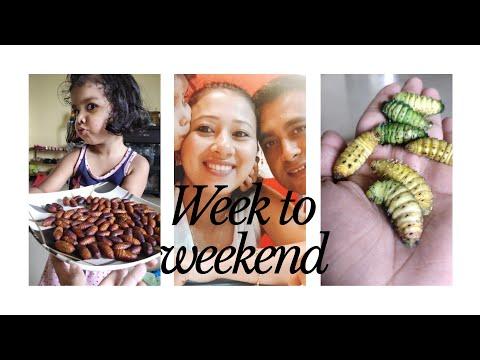 Week to Weekend |Celebrating Independence Day and Raksha Bandhan | Assamese Vlog | Meenakshi Gogoi