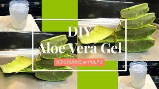 Homemade Aloe Vera Gel (NO CHUNKS!) | DIY | TheLifestyleLuxe