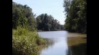 preview picture of video 'Schadenskontrolle -Sendlinger Lacken am 29.8.2005'