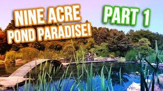 Quarantine *KOI POND* In Massive Garden: Part 1