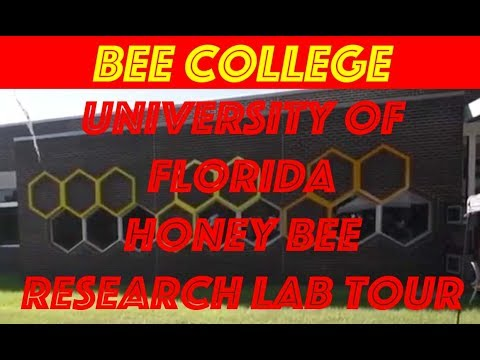 Beekeeping diary #5: University of Florida Bee College Tour