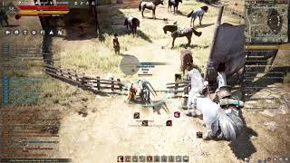 FIRST AND LAST COURSER AWAKENING TRIES!!!!  (BDO-SEA)