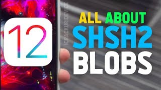 How to Downgrade from iOS 12 to 11or lower with shsh2 blobs for