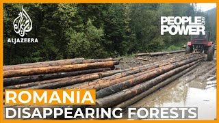Romania: Rape of the Forest | People and Power