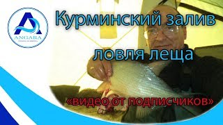 Рыбалка на курминском заливе иркутской области