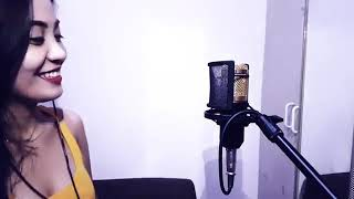 Imagination By Shawn Mendez (cover)