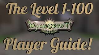 Wynncraft 1.14: Level 1-100 Leveling Guide (Vintage PSA Edition)