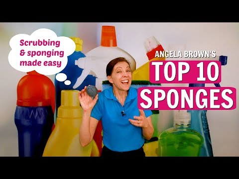 Angela Brown's Top 10 Sponges for House Cleaning