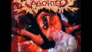 Wrenched Carnal Ornaments - Aborted