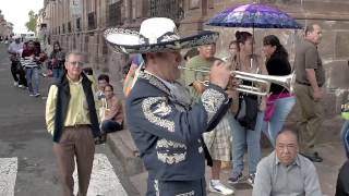 Flashmob Mariachi Morelia 2016
