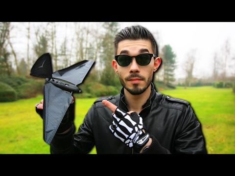 L'OISEAU DRONE