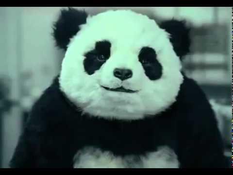 Panda-Käse