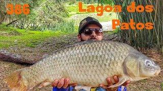 Pesqueiro Lagoa dos Patos - Fishingtur na TV 386