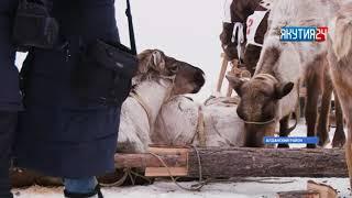 Суровая снежная зима в Алданском районе создала проблему местному сельскому хозяйству