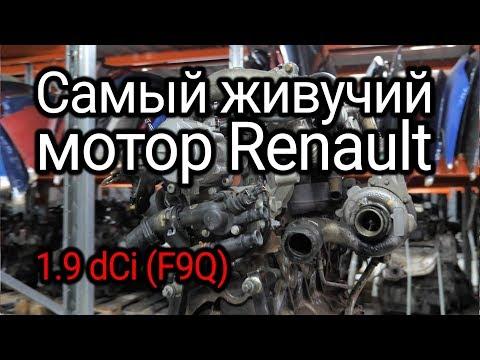 Фото к видео: Надежный или неудачный? Разбираем все проблемы дизеля Renault 1.9 dCi (F9Q)
