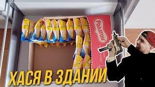 XASYA В ОФИСЕ WARGAMING