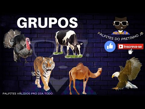 Palpites Pretinho Jb 08/03/2021 Segunda-Feira