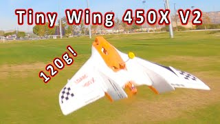 LDARC Tiny Wing 450X V2 (FPV Version) Review ✈️