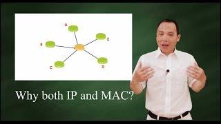 Why do we need both IP and MAC address?