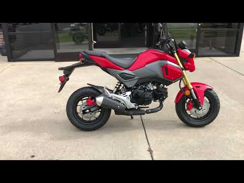 2018 Honda Grom in Greenville, North Carolina - Video 1